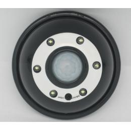 PIR Light DVR Camera